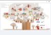 Chancen und Herausforderungen digitaler Lernszenarien