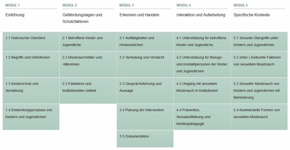 Abbildung 2 - Beispiel: Modulgrafik aus dem Online-Kurs Prävention von sexuellem Kindesmissbrauch.